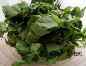 Салат с щавелем и зеленью